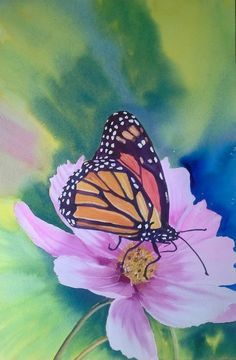 butterfly-on-flower-35x53cm.jpg (Painting) by Agnes Mclaughlin