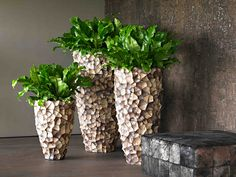 tunda vase small medium large 512102 512108 512114 is part of Rectangular planters - Outdoor Flowers, Outdoor Planters, Diy Planters, Ceramic Planters, Garden Planters, Indoor Garden, Indoor Plants, Planter Pots, Potted Plants