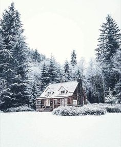 WINTER Shared by Ally. Find images and videos about love, beautiful and pretty on We Heart It - the Rustic Home Design, Winter Cabin, Cozy Winter, Winter Scenery, Cabins And Cottages, Christmas Aesthetic, Cabins In The Woods, Winter Time, Winter Christmas