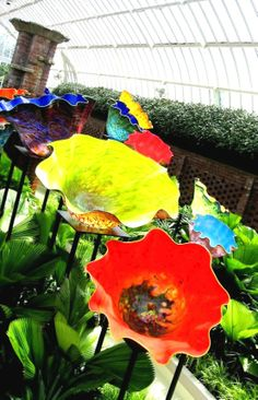 """Create Every Day: Dale Chihuly """"Glass in the Garden"""" Exhibition (part 2)"""