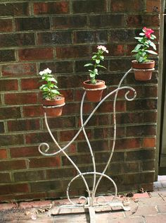 Old wrought iron plant display                                                                                                                                                                                 Más