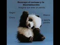 who new a panda would want to say, HELLO! Happy Panda, Happy A, Are You Happy, Fluffy Animals, Baby Animals, Cute Animals, Baby Pandas, Red Pandas, Wild Animals