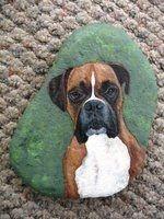 Pet portraits - Rocks By Emmanuelle