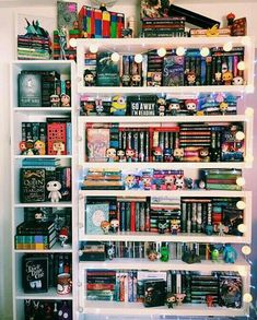 A pantry of books to feed the soul. Cool Bookshelves, Book Shelves, Bookcases, Bookshelf Plans, Bookshelf Ideas, Tumblr Bookshelf, I Love Books, My Books, Dream Library