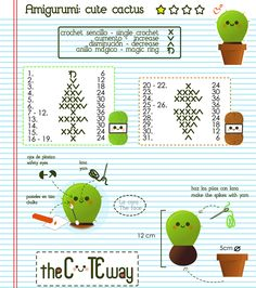 Amigurumi Cactus - free crochet pattern