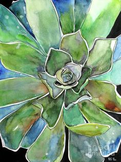 Succulent Watercolor Painting Agave Artwork Painting by Fei Liu - Succulent Watercolor Painting Agave Artwork Fine Art Prints and Posters for Sale Watercolor Succulents, Watercolor Flowers, Watercolor Paintings, Watercolors, Succulents Art, Watercolor Canvas, Green Watercolor, Fine Art Amerika, Succulent Wall Art