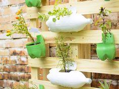 Faça você mesmo: Jardim vertical de Pallet