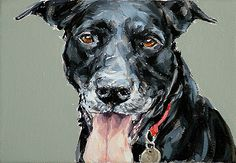 dog portraits from photos | Pet oil paintings - Pet Portraits from photos - You Are Art
