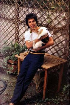 """Freddie Mercury - Dedicated his record Mr. Bad Guy """"to my cat Jerry- also Tom, Oscar and Tiffany, and all the cat lovers across the universe- screw everybody else"""". My kind of guy."""