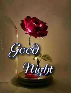 Good Night Friends Images, Good Night Thoughts, Good Night Hindi, Good Night Love Quotes, Good Night Prayer, Good Night Blessings, Good Night Messages, Good Night Wishes, Night Quotes