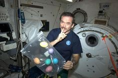 Suburban spaceman: Astronaut Chris Hadfield Celebrates Easter in Space with eggs he has in a ziplock bag.