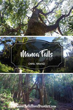 Manoa Falls | Oahu, Hawaii | www.thetattooedtravelers.com
