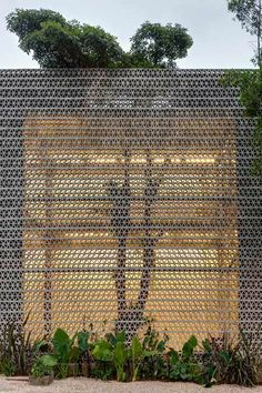 Perforated Concrete Walls - La Tallera Gallery, Frida Escobeda