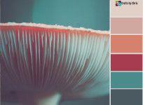 Monday Motivation – Color Palette #66
