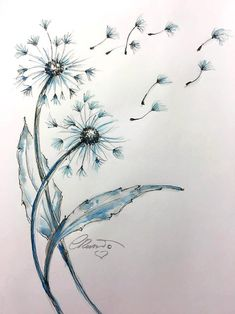 Items similar to Watercolor Dandelions Limited Edition Print Watercolor Painting Fine Art Print Size Nature watercolor Painting Blue Dandelions on Etsy Watercolor Paintings Nature, Ink Painting, Watercolor And Ink, Watercolor Flowers, Rose Paintings, Watercolor Disney, Drawing Flowers, Indian Paintings, Abstract Paintings