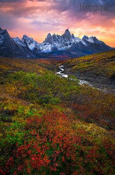https://flic.kr/p/q6v9jz | Autumn In The Yukon and the Tombstones |