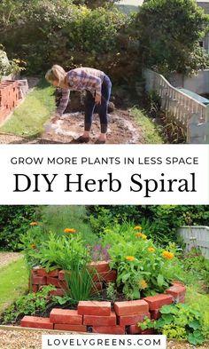 Herb Spiral, Spiral Garden, Diy Herb Garden, Herb Garden Design, Veg Garden, Vegetable Garden Design, Edible Garden, Green Garden, Garden Bed