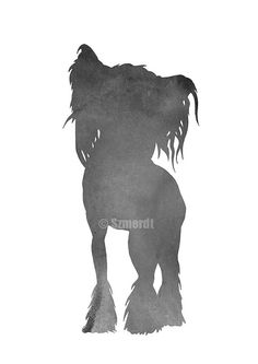 Chinese Crested silhouette Custom painting for by ColorWatercolor