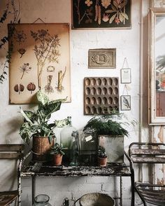 thesill: Quiet and cozy corner at Mason&Painter,. Columbia Road Flower Market, Interior Inspiration, Design Inspiration, Cozy Corner, Deco Design, Vintage Decor, Boho Chic, Bohemian, Beautiful Homes