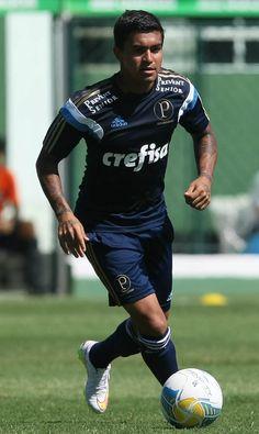 Com reforços, Oswaldo define lista de relacionados do Palmeiras #globoesporte