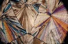 Sugar Crystals Under A Microscope