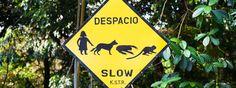 http://www.stefanopaterna.com/fotoreise-costa-rica-fotokurs-fotoworkshop-fotoseminar/