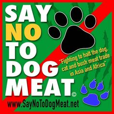 SAY NO TO DOG MEAT.NET | Bringing an end to the dog and cat meat trade internationally