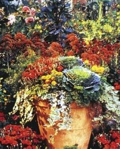 Growing Vegetables and Flowers in Containers Successfully