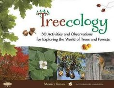 Treecology: 30 Activities and Observations for Exploring the World of Trees and s