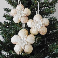 3 Seashell Snowflakes Christmas Ornament Shell Flower StarTropical Beach Nautical