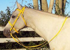 Any Size YELLOW English Horse BRIDLE & REINS Trail/Endurance/Show Beta Biothane