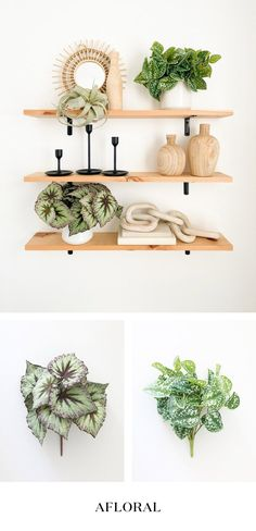 Achieve the perfect #shelfie with these artificial plants that look real! Add freshness, height and dimension to your shelf decor game without the fuss of real plants. Shop faux plants at Afloral.com. Image by @modernly_you. Decorating Small Spaces, Decorating Your Home, Keep Life Simple, Artificial Succulents, Silk Plants, Real Plants, Shelfie, Silk Flowers, House Plants