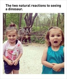 children's natural reactions seeing dinosaur