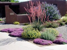 Waterwise Landscapes Incorporated was formed in 1993 in Albuquerque New Mexico by Barb and Hunter Ten Broeck. Description from waterwiselandscapesnm.com. I searched for this on bing.com/images