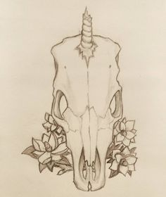 What does a unicorn skull look like?