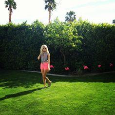 Hot pink shorts and pink flamingos. Summerrrrr.