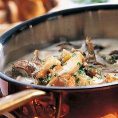 Pilzsauce Rezept | Küchengötter