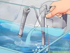 How to Make an Aquarium (with Pictures) - wikiHow Turtle Aquarium, Aquarium Fish Tank, Aquarium Ideas, Best Aquarium Filter, Amazing Aquariums, Image Title, Freshwater Fish, Tropical Fish, Pet Store