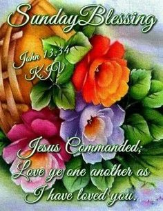 Much love and abundant blessings to Everyone!! Good Morning Friends, Happy Sunday Morning, Happy Sunday Quotes, Sunday Love, Blessed Quotes, Morning Blessings, Morning Prayers, Blessed Sunday, Sunday Greetings