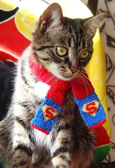 Scafr for cat superhero Superman inspired cat neckwear Gift for cat Cat costume Crocheted scarf for & Bow tie cat collar Harry Potter inspired cat collar Gift for cat ...