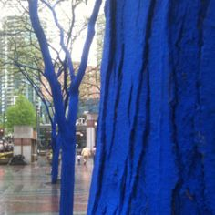 Why is Seattle so blue?