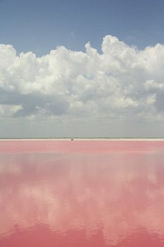 Pink Salt Pools, Coloradas, Yucatán, Mexico