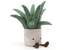 Big Potted Plants, Cactus Plants, Aloe Vera, Little Campers, Paper Store, Jellycat, Snake Plant, Natural Baby, Orchids