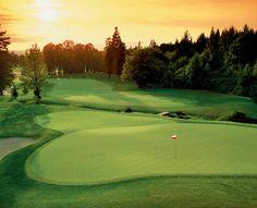 #3 Witch Hollow at Pumpkin Ridge Golf Club #GolfClubOfTheDay I Rock Bottom Golf