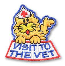 1000 images about pet care on pinterest pet care