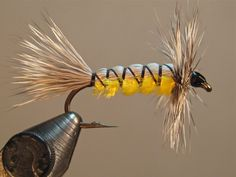 Crazy Goof Fly SBS | Washington Fly Fishing