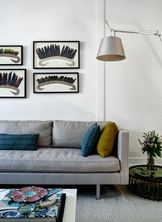 cristiane peixoto and marcus silberman / penthouse carioca, nyc