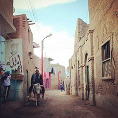 Egyptian man riding a donkey in some village in Beni Suef (120km) south Cairo. Photo by : Mahmoud Khaled