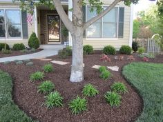 Garden Ideas Around Trees find this pin and more on timmons landscape ideas landscape around trees Elegant Tree 136018 Home Design Ideas Landscaping Around