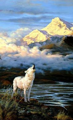 They prance through the forest  they track through the sky  they are noble in friendship  and single in thought  I join them in flight  I run in the company of Wolves.